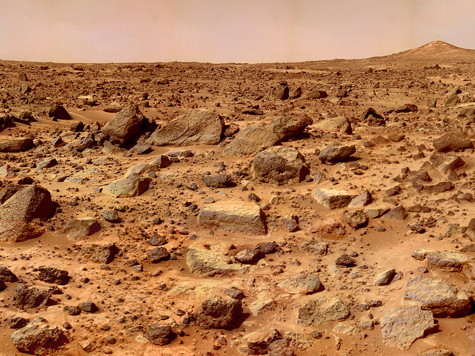Martian Meteorite Shows Evidence of Water