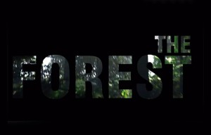 The Forest Open World Survival Horror Game For Oculus Rift And PC (video)