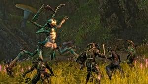 Elder Scrolls Online Launch Times