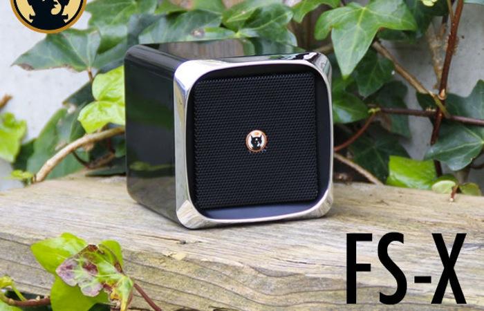 Frankenspiel FS-X Bluetooth Speaker