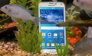 Samsung Galaxy S5 Active Casing Shows Handsets Design