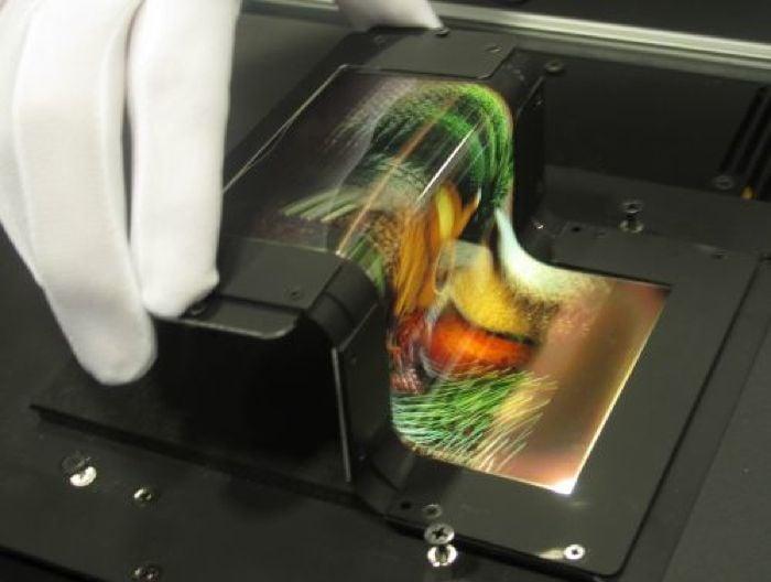 foldable oled display