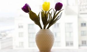 Makerbot PrintShop Vase Maker Lets You Easily Create And 3D Print Custom Vases