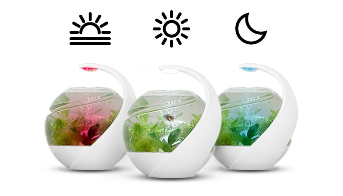 Avo Tropical Self Cleaning Fish Tank Launches On Kickstarter (video)