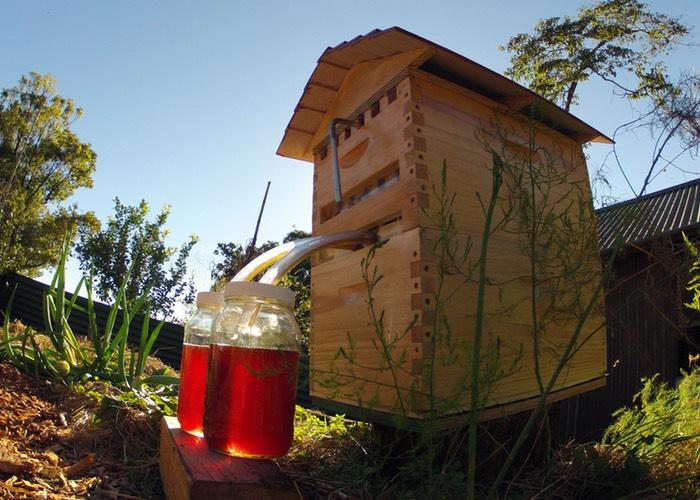 New Beehive Design