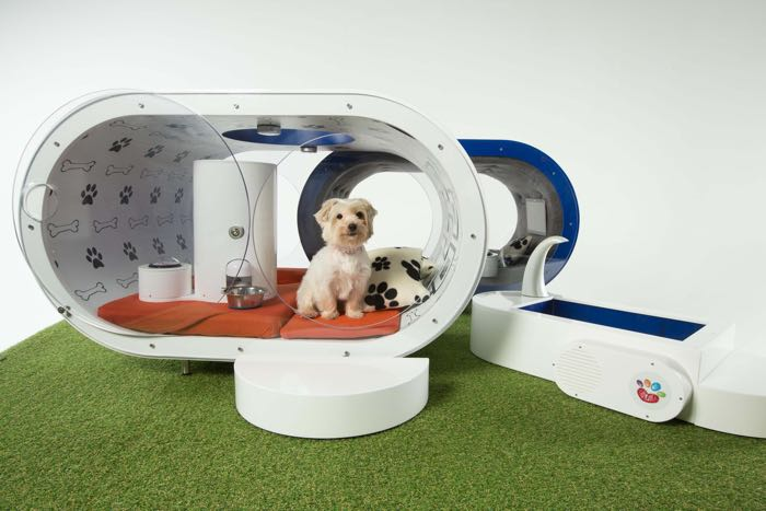 Samsung dream dog house is a 20 000 kennel - Niche pour chien fabrication maison ...