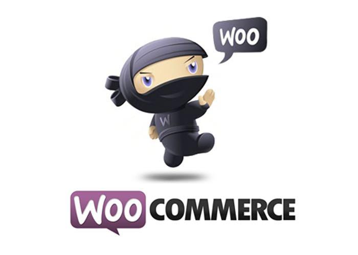 Wordpress Creator Automattic Buys WooCommerce