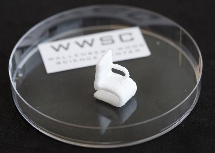 Plant Cellulose 3D Printed
