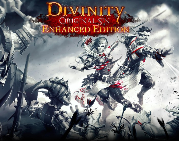 Divinity Original Sin Enhanced Edition RPG