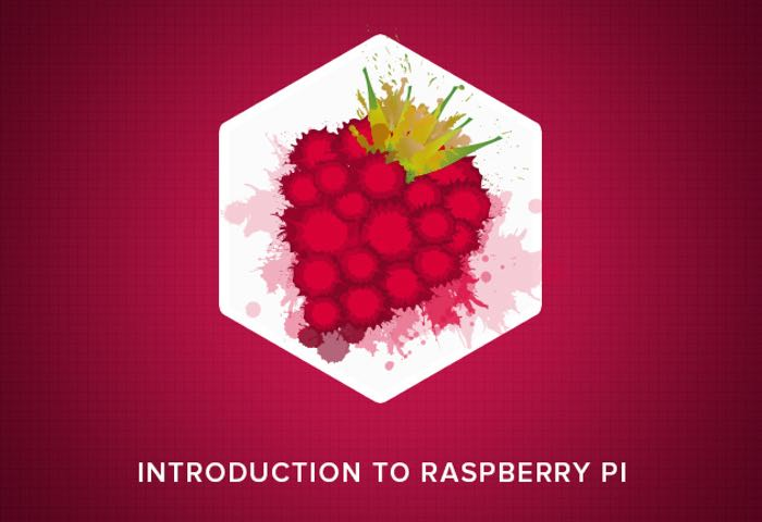Raspberry Pi Hacker Bundle