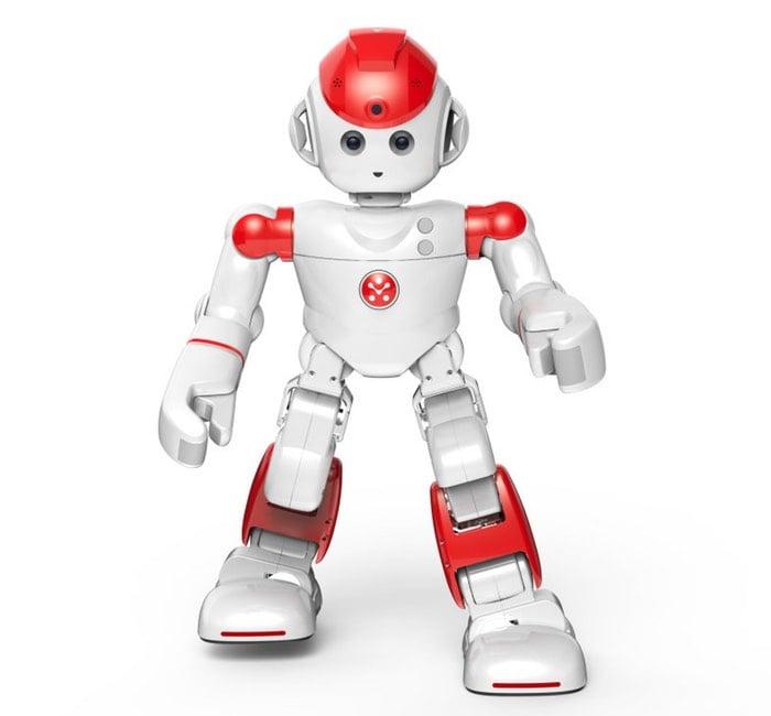 Alpha 2 robot