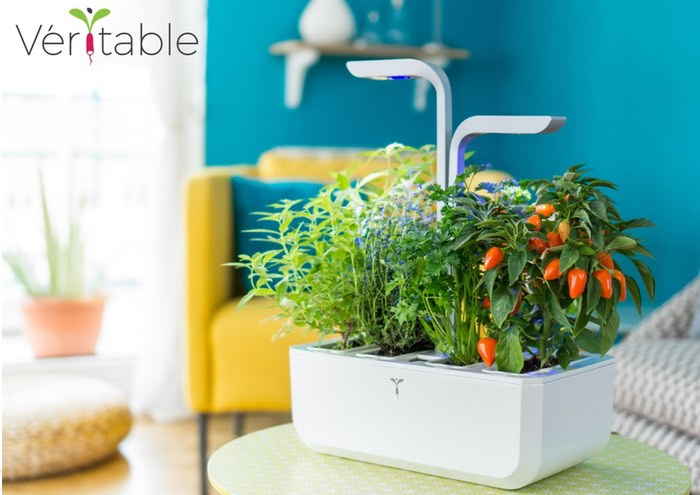 Veritable autonomous indoor garden lets you grow herbs and for Indoor gardening gadgets