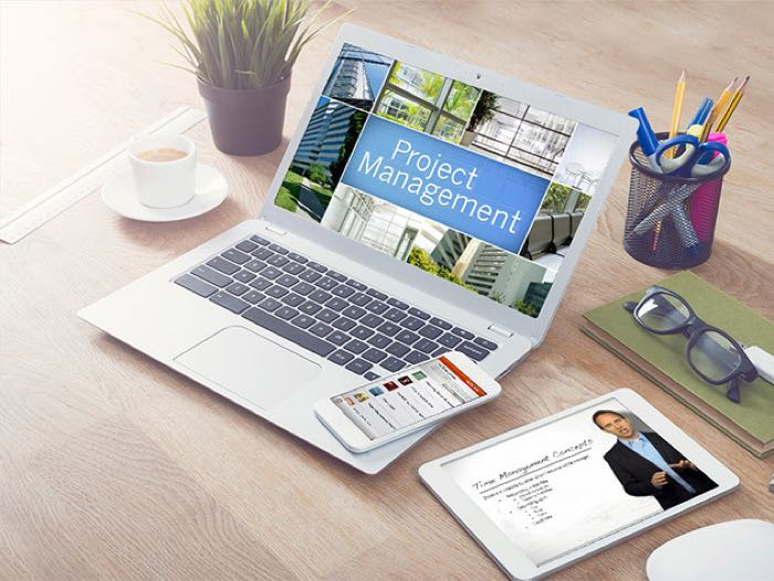 Project-Management-Professional-1-2-1-2