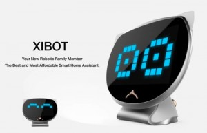 XIBOT Smart Home Assistant Hits Indiegogo (video)