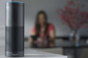 Raspberry Echo Amazon Echo