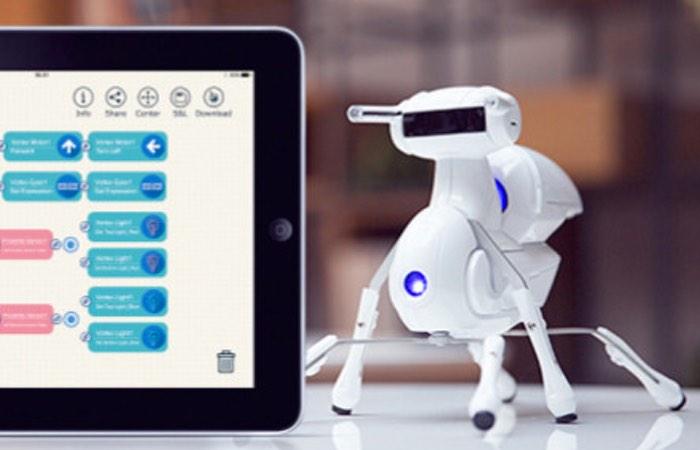 Antbo Robot-1