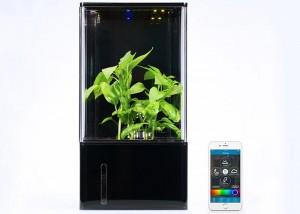 EcoQube Air Smartphone Controlled Desktop Greenhouse Hits Kickstarter (video)