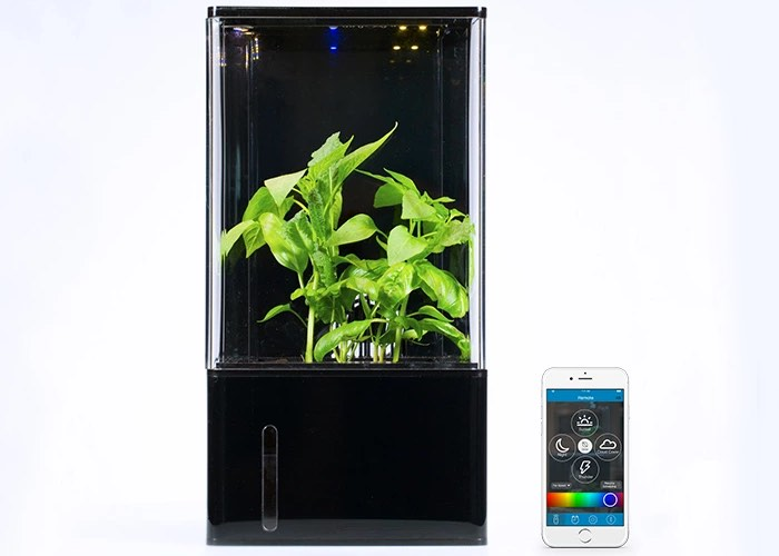 Smartphone Controlled Desktop Greenhouse