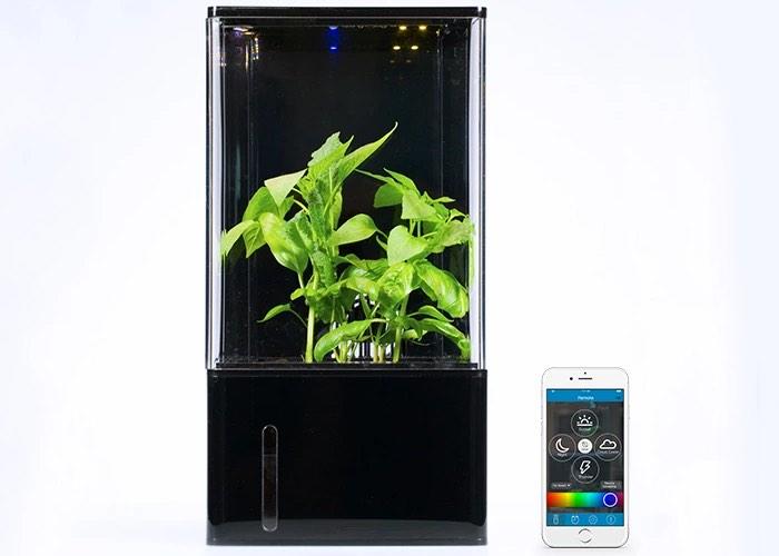 Smartphone Controlled Desktop Greenhouse