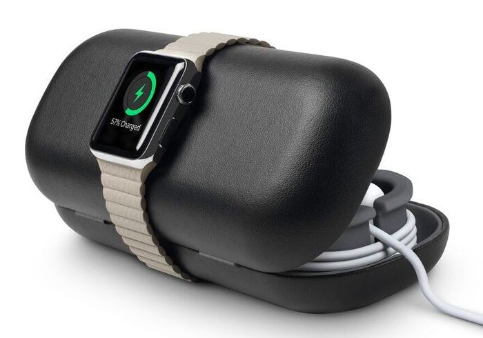 Apple Watch Travel Case And Charger