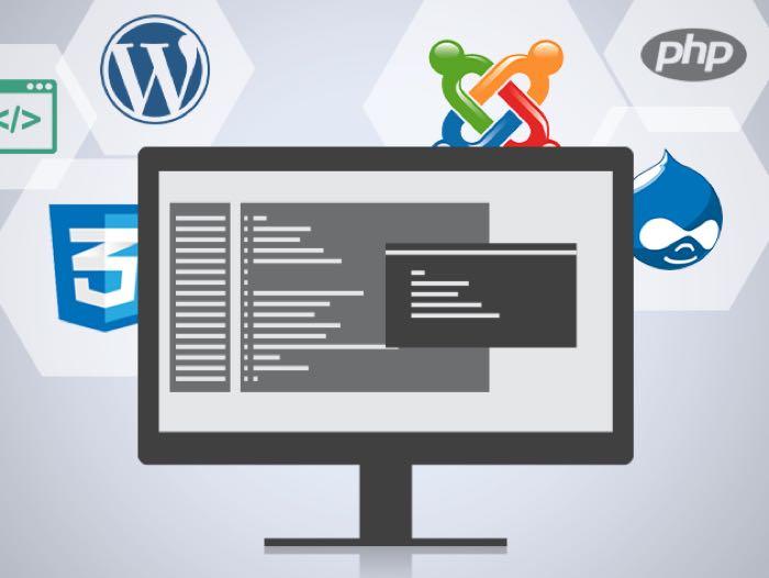 OSTraining Developer Courses