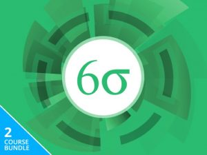 Lean Six Sigma Green & Black Belt Bundle, Save 93%