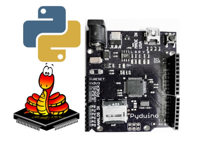 Pyduino Arduino Based Development Board