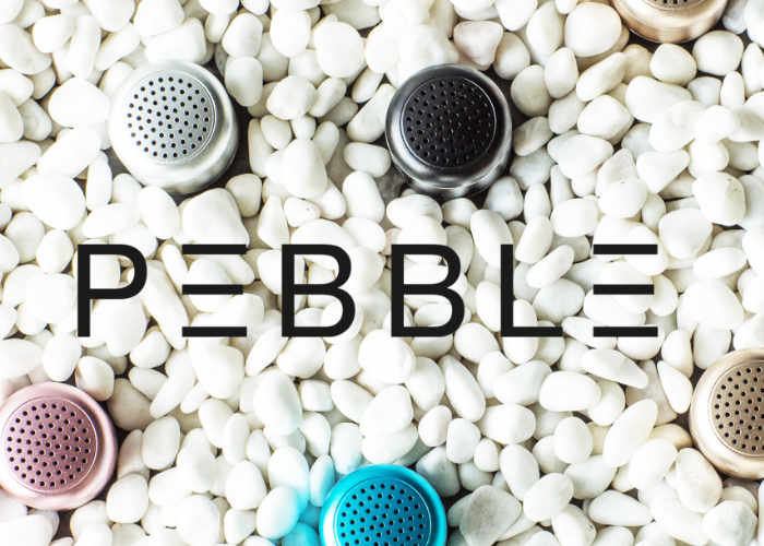 Pebble Wireless Speaker