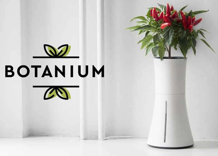 Botanium Helps You Easily Grow Edible Greens Indoors Soil Free Growing