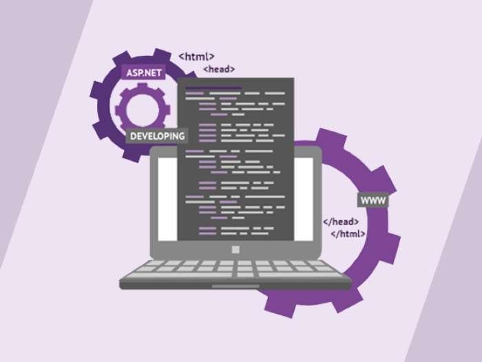 Microsoft Programming Certification Training Bundle