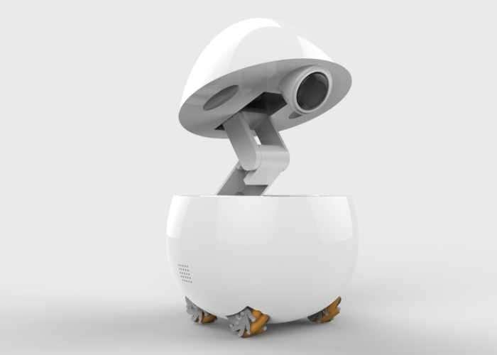 Panasonic Concept Companion Robot