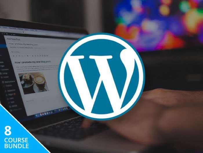 All-In-One WordPress Business Bundle