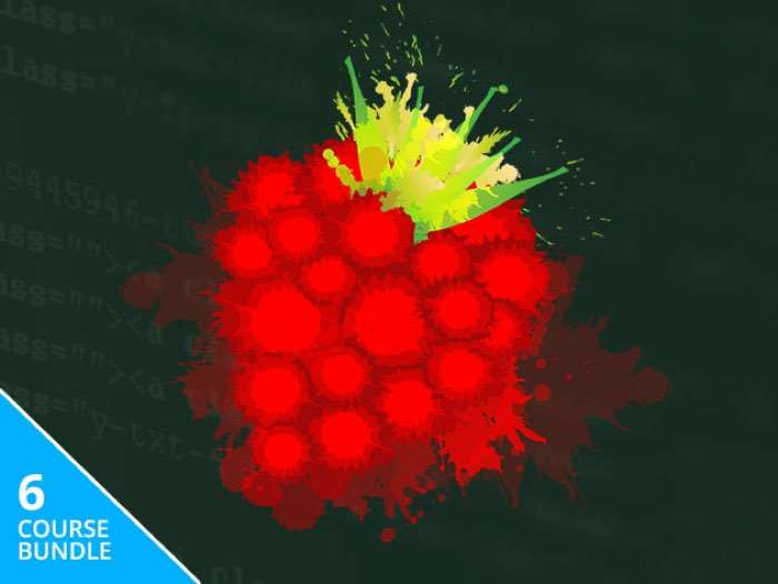 Complete Raspberry Pi 3 Training Bundle