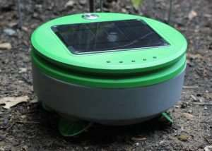 Tertill Solar Powered Weed Killing Robot For Your Garden (video)