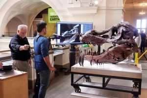 Microsoft's Kinect Used To Scan T-Rex Skull