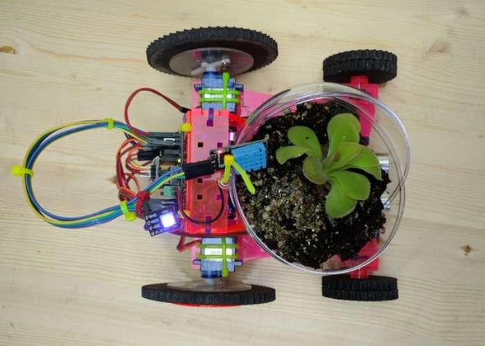 Easy to Build Organic Robot Kits