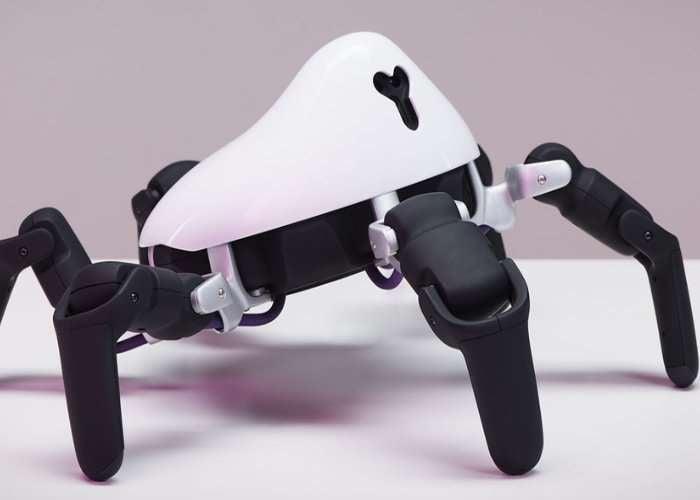 HEXA Programmable Robot