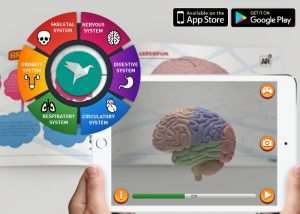 Learn About The Human Body Using Augmented Reality