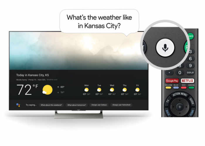 Google Assistant Sony TV