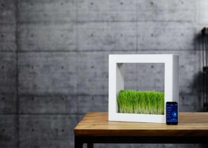 Design news geeky gadgets for Indoor gardening gadgets