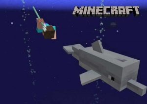 Minecraft Aquatic Update Adds Dolphins, Coral Reefs And More