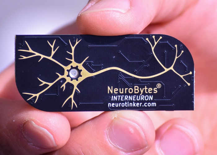 NeuroBytes Electronic Neuron Simulators