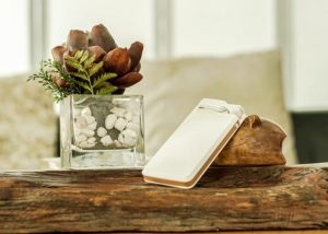 Civia 3-in-1 Speaker, Battery Pack And Wireless Earpiece