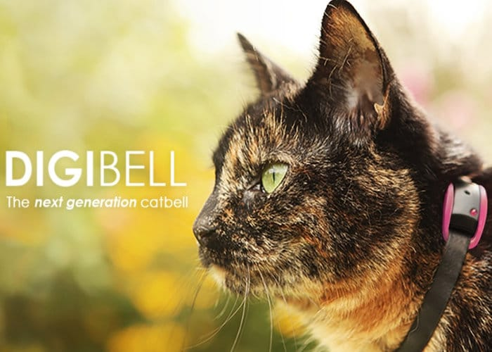 Digibell Next Generation Cat Bell