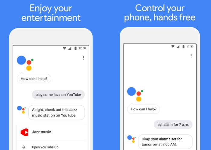 Lightweight Google Assistant Go Assistant