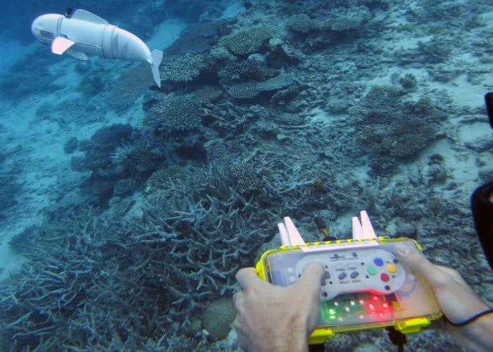MIT SoFi Robot Fish Robot