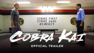 New Karate Kid TV Series Cobra Kai Full Trailer (Video)