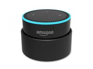 Amazon Echo Dot Smart Battery Case