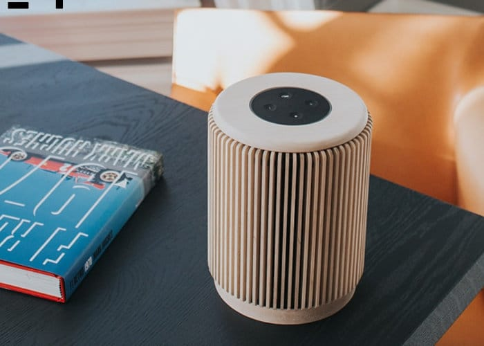 Casey Sound Wooden Smart Speaker Case