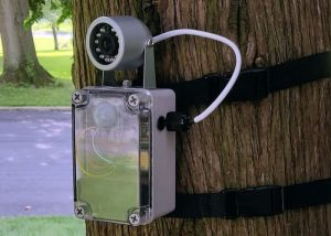 DIY Motion Activated Wildlife Camera Arduino Project